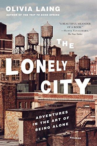 9781250118035: Lonely City