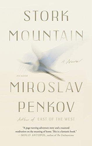 9781250118103: Stork Mountain