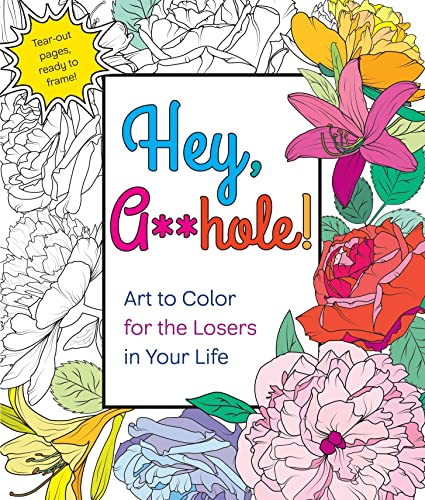 9781250126818: Hey, A**hole: Art to Color for the Losers in Your Life