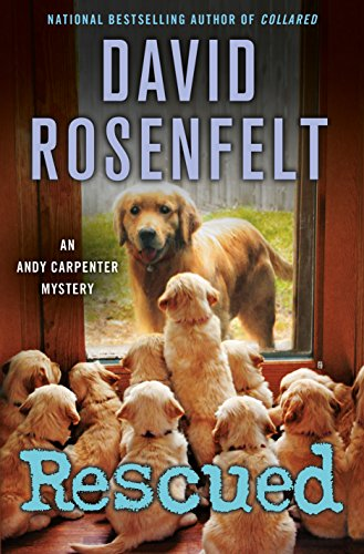 Book Cover: RESCUED