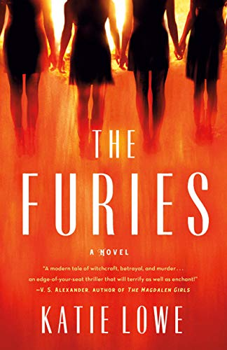Book Cover: The Furies: A Novel