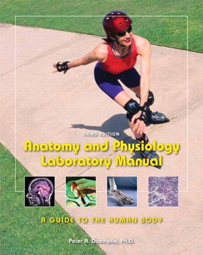 9781256640080: Anatomy and Physiology Laboratory Manual: A Guide to the Human Body