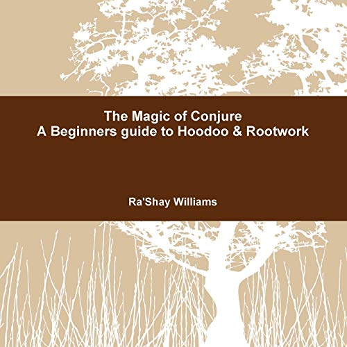 The Magic of Conjure a Beginners Guide to Hoodoo & Rootwork: Ra'shay Williams