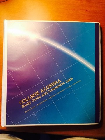 9781269375139: College Algebra Study Guide and Interactive Labs