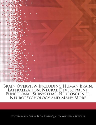 Brain Overview Including Human Brain, Lateralization, Neural: Ken Surin