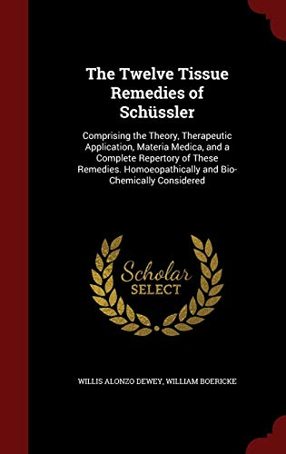 9781297509551: The Twelve Tissue Remedies of Schüssler: Comprising the Theory, Therapeutic Application, Materia Medica, and a Complete Repertory of These Remedies. Homoeopathically and Bio-Chemically Considered