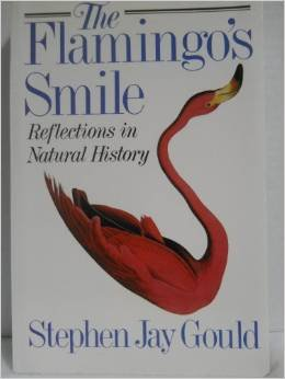 9781299241824: The Flamingo's Smile: Reflections in Natural History