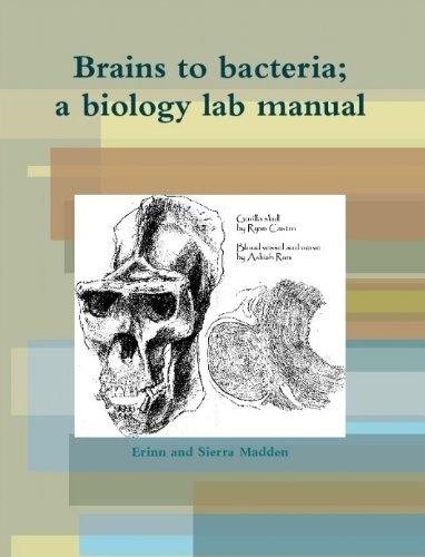 9781300092735: Brains to Bacteria; Human Biology Lab