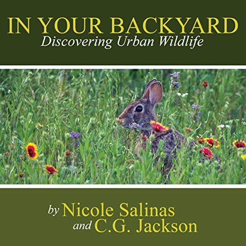 9781304018236: In Your Backyard: Discovering Urban Wildlife