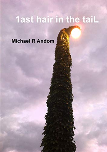 1ast hair in the taiL (Paperback): Michael R Andom