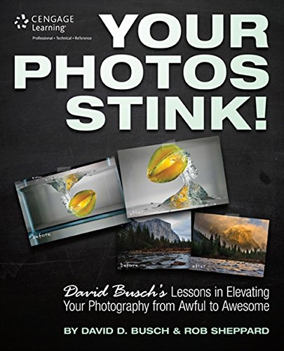 9781305084452: Your Photos Stink!: David Busch's Lessons in Elevating Your Photography from Awful to Awesome