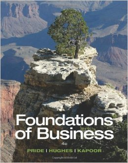 9781305655010: Foundations of Business, Loose-Leaf Version
