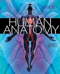 9781308135892: Saldin's Human Anatomy Fourth Edition