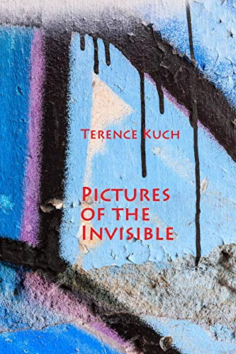 Pictures of the Invisible (Paperback): Terence Kuch