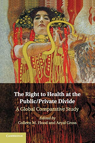 9781316507544: The Right to Health at the Public/Private Divide: A Global Comparative Study