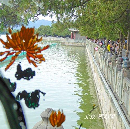 9781320105446: Beijing 2014