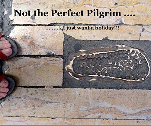 9781320120487: Not the Perfect Pilgrim ....