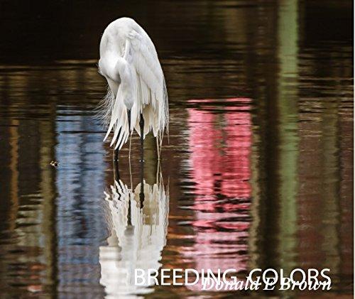 9781320463652: Breeding Colors
