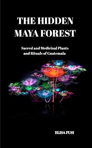 9781320569729: THE HIDDEN MAYA FOREST