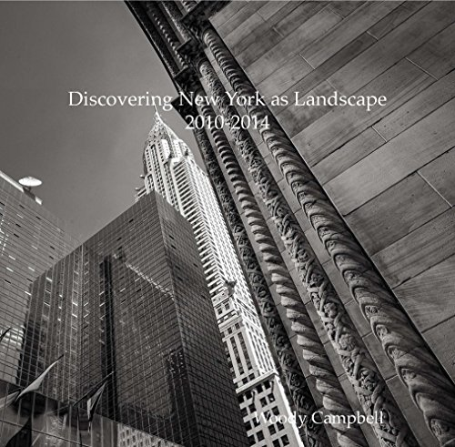 9781320656696: Discovering New York as Landscape