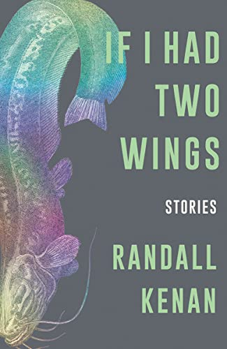 9781324005469: If I Had Two Wings: Stories