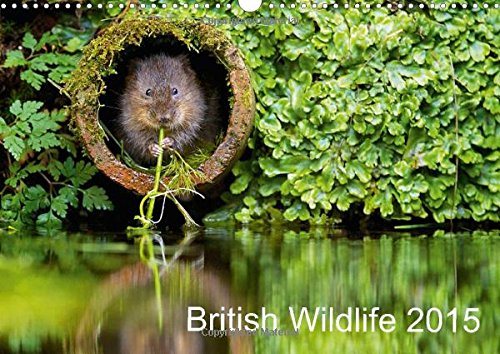 9781325000661: British Wildlife 2015: A Collection of British Wildlife