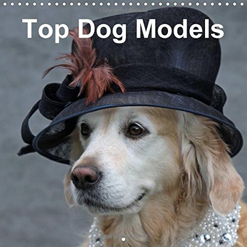 9781325004713: Top Dog Models Wall Calendar 2015 300