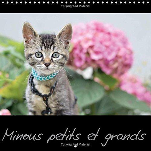 9781325035588: Minous Petits Et Grands: Calendrier Sur Les Chats
