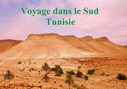 9781325037797: Voyage dans le sud Tunisie : De Djerba � Chenini en passant par Tozeur et Tataouine