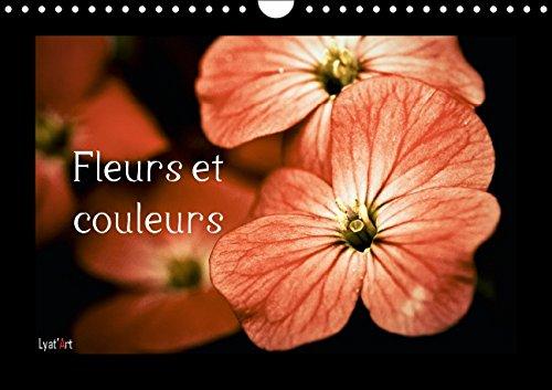 Fleurs Et Couleurs: Calendrier Mensuel Sur Le Theme Des Fleurs Et Des Couleurs (Calvendo Nature) (...