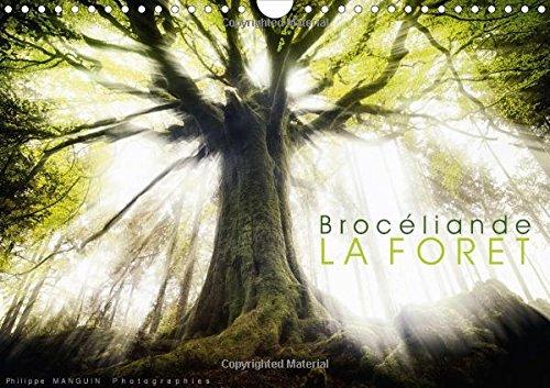 9781325041084: Broceliande, La Foret: Photographies De La Foret De Broceliande (Calvendo Nature) (French Edition)