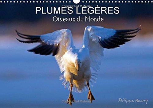 9781325042708: Plumes Legeres. Oiseaux Du Monde: Treize Photos D'oiseaux En Action, Photographies Avec L'oeil D'artiste De Philippe Henry