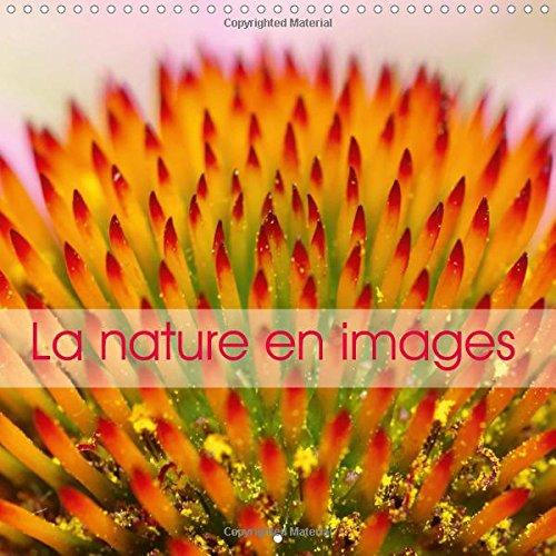 9781325049103: La Nature En Images: La Nature Au Fil Des Saisons, En Photos Macro Hautes En Couleurs.