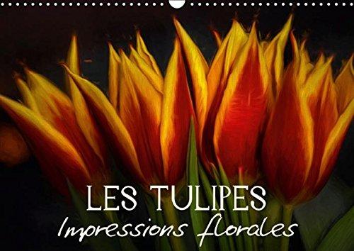 Les Tulipes Impressions Florales: Egayez Votre Quotidien ! (Calvendo Nature) (French Edition): ...