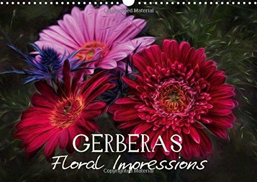 9781325054985: Gerberas Floral Impressions (Wall Calendar 2016 DIN A3 Landscape): Art Calendar - Photographic impressions of nature (Monthly calendar, 14 pages) (Calvendo Nature)