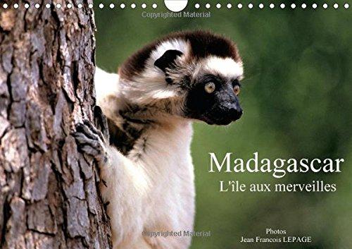 9781325057481: Madagascar l'�le aux merveilles : Calendrier mural A4 horizontal 2016