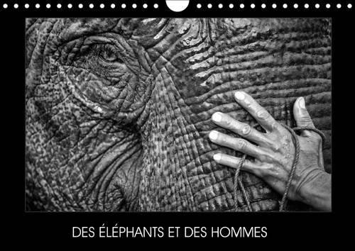 9781325057535: Des éléphants et des hommes : Calendrier mural A4 horizontal 2016