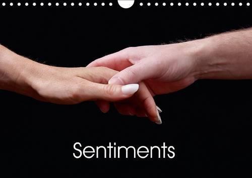 Sentiments: Serie D'images de Mains Relatant le Concept D'emotions (Calvendo Personnes) (...