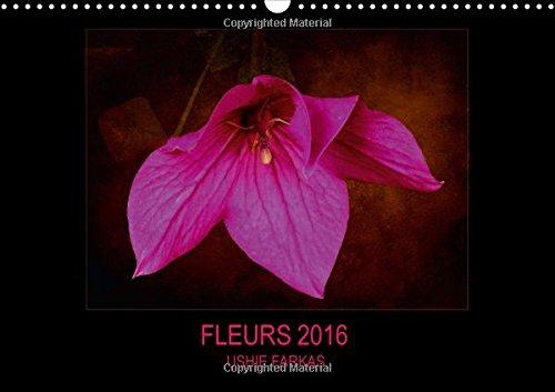 Fleurs 2016 ( FR - Version ): Fleurs Avec Texture (Calvendo Places) (French Edition): Farkas, Ushie