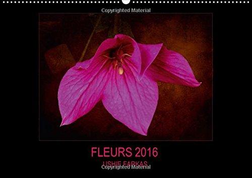 Fleurs 2016 ( FR- Version ): Fleurs Avec Texture (Calvendo Places) (French Edition): Farkas, Ushie