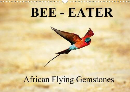 9781325064625: Bee - Eater - African Flying Gemstones / UK-Version: African Bee-Eaters at the Riverbanks of the Sambesi, Border Between Sambia and Namibia (Calvendo Animals)