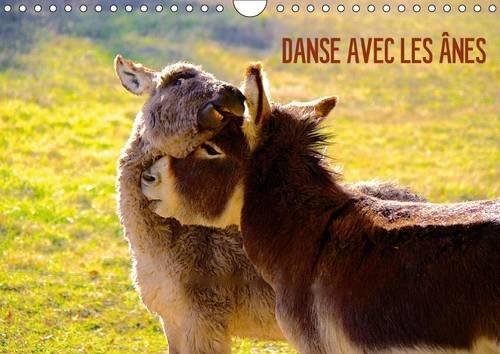 9781325067152: Danse avec les �nes : Les �nes d'Espan�s de la r�gion Midi-Pyr�n�es. Calendrier mural A4 horizontal 2016 (Calvendo Animaux)