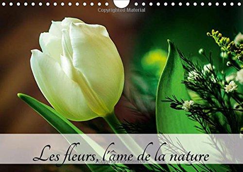 Les Fleurs, l'Ame de la Nature: L'Ame de la Nature est Partout Autour de Nous. Je l'...