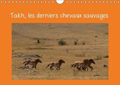 Takh, les Derniers Chevaux Sauvages: Nom Mongol de ce Cheval Originaire d'asie Centrale (...
