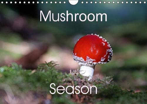 9781325077434: Mushroom Season: A Small Collection of Mushrooms, Found in German Forests. They All Look Nice, the Edible Ones as Well as the Poisonous Species (Calvendo Nature)