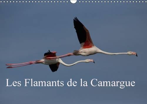 Les Flamants de la Camargue: Scenes de la Vie D'une Espece Fascinante (Calvendo Nature) (...