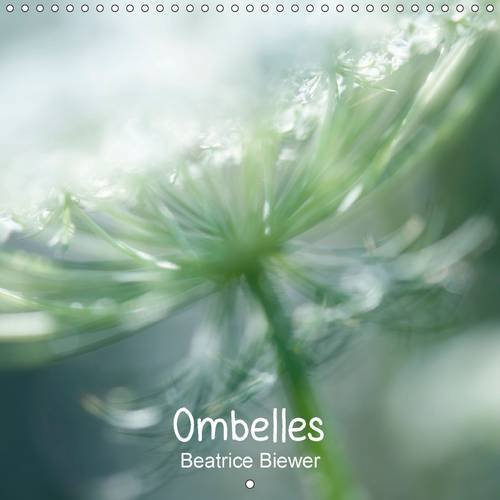 Ombelles: La Carotte Sauvage (Calvendo Nature) (French Edition): Beatrice Biewer