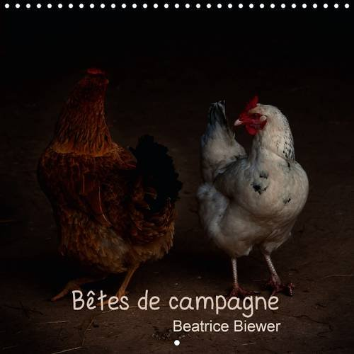 Betes de Campagne: Des Animaux de Nos Campagnes (Calvendo Animaux) (French Edition): Beatrice ...
