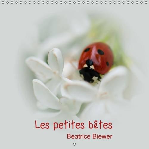 Les Petites Betes: Les Jolies Petites Betes de Nos Jardins (Calvendo Nature) (French Edition): ...