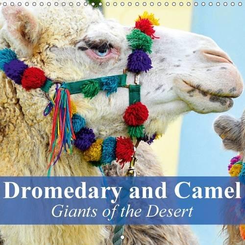 9781325085293: Dromedary and Camel - Giants of the Desert: Frugal Giants in the Desert Sand
